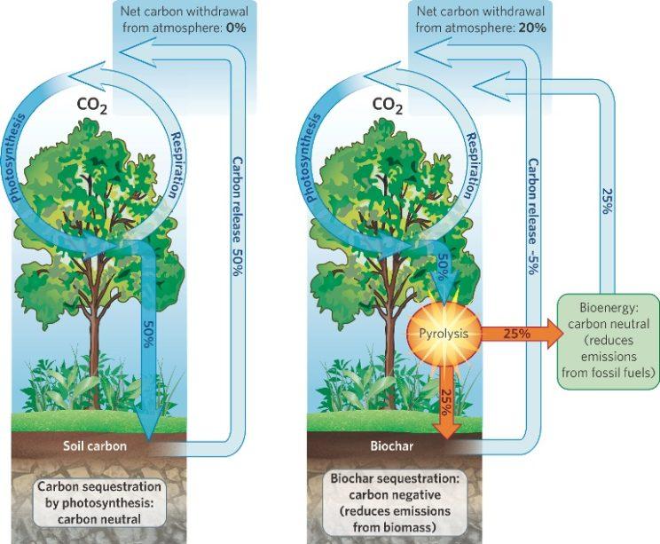 biochar-diagram